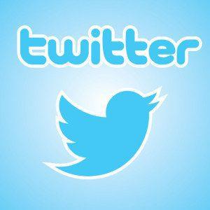 26632164 - heraldry of the social network twitter